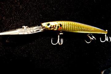 Staysee 120 sp-leurre mer bar lucky craft-peche mer leurre Aurora Gold