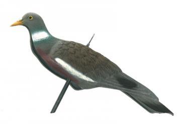 Appelant Pigeon-anglais demi coque plastique